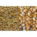 Mélange blé-maïs 25 kg