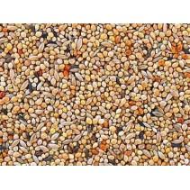 Mélange de graines pour oiseaux exotiques 25 kg
